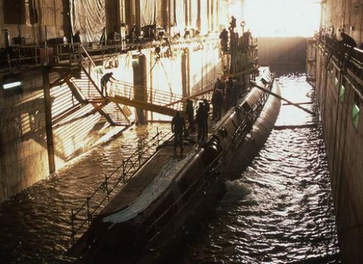 alvéole sous-marin Flore S645