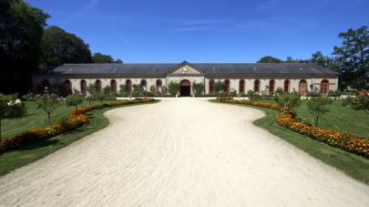 haras-national-hennebont